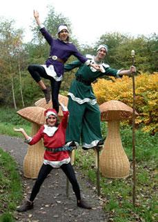 Acrobatic Elfs